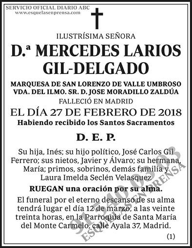 Mercedes Larios Gil-Delgado